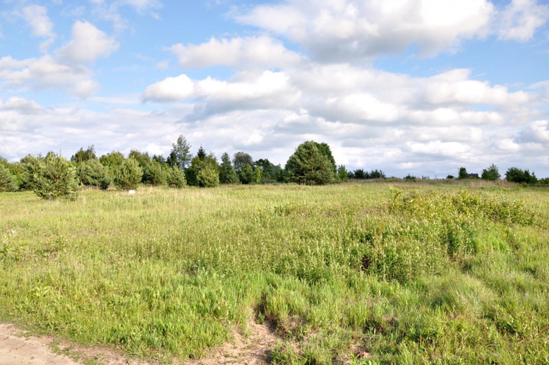 Beautiful plots in peacefull area